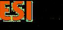 European Software Institute - Center Eastern Europe Logo